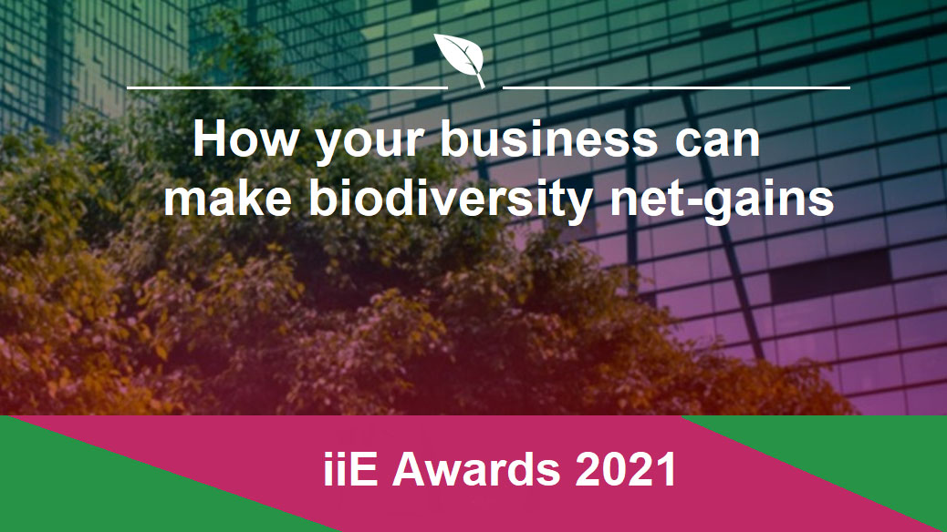 how can your business make biodiversity net-gains