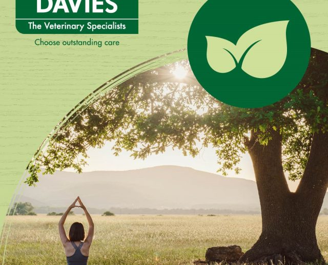 Davies Vets - Investors in the Environment